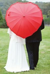 Umbrella Photo Croped